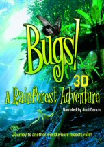 Bugs a Rainforest Adventure
