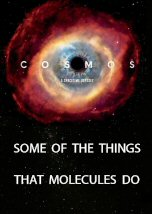Some of the Things That Molecules Do