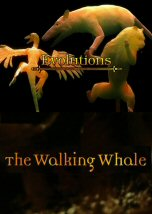 Evolutions: The Walking Whale