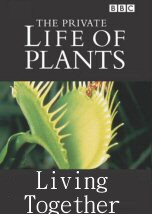 The Private Life of Plants Living Together